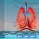 lung-diagram